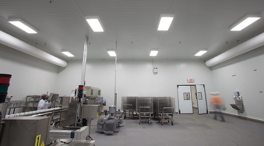 Lighting For Food Processing